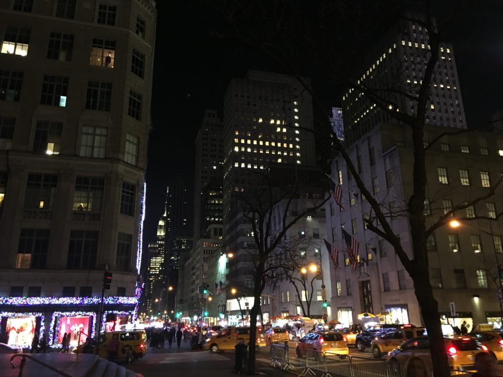 2016 Fifth Avenue Holiday