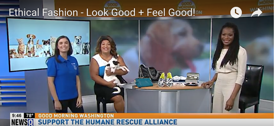 Check out my segment on ABC 7's Good Morning Washington about Ethical Fashion & Animal Rescue! - Roxanne Carne | Personal Stylist